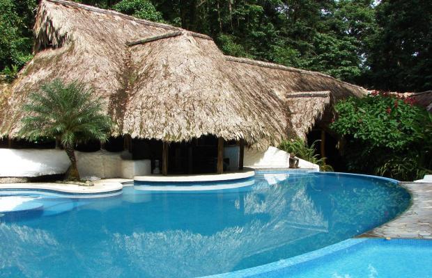 фото отеля Cariblue Beach and Jungle Resort изображение №37
