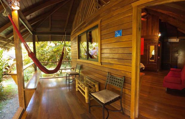фотографии Cariblue Beach and Jungle Resort изображение №32