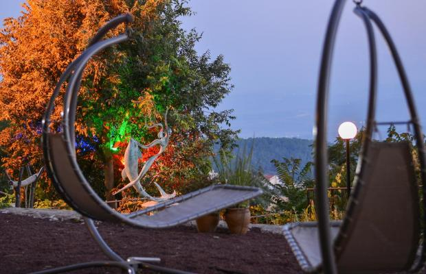 фото Ruth Rimonim Hotel изображение №22