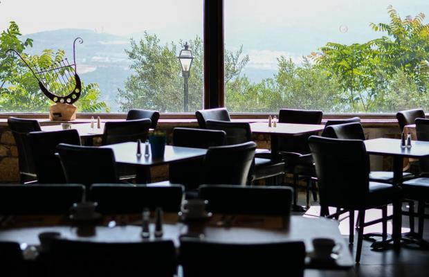 фото Ruth Rimonim Hotel изображение №10