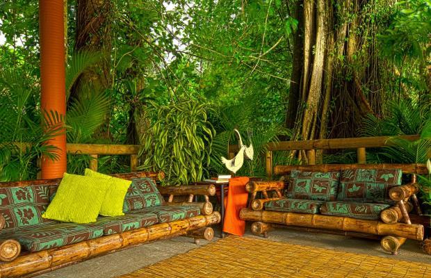 фотографии отеля Evergreen lodge изображение №63