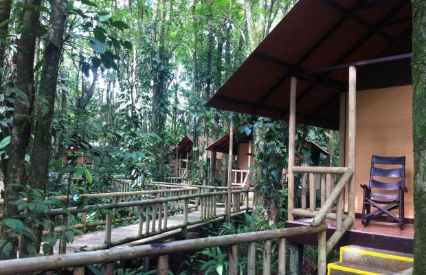 фотографии отеля Evergreen lodge изображение №31