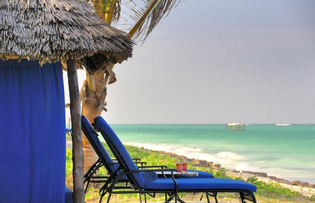 фото отеля The Palms изображение №13