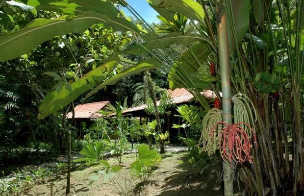 фотографии Esquinas Rainforest Lodge изображение №24