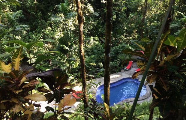 фотографии отеля Casa Corcovado Jungle Lodge изображение №3
