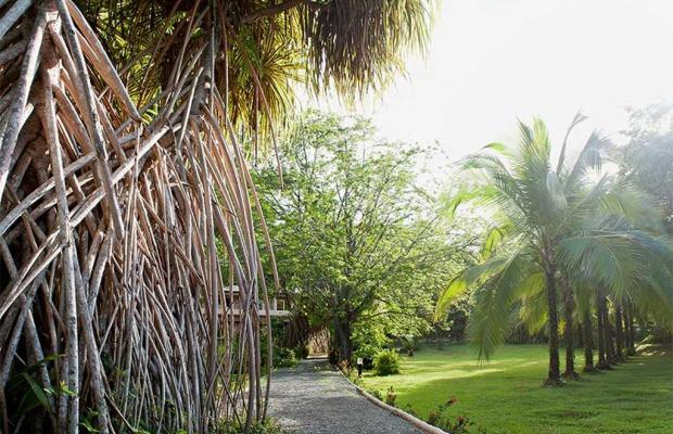 фото Karahe Beach Hotel изображение №54