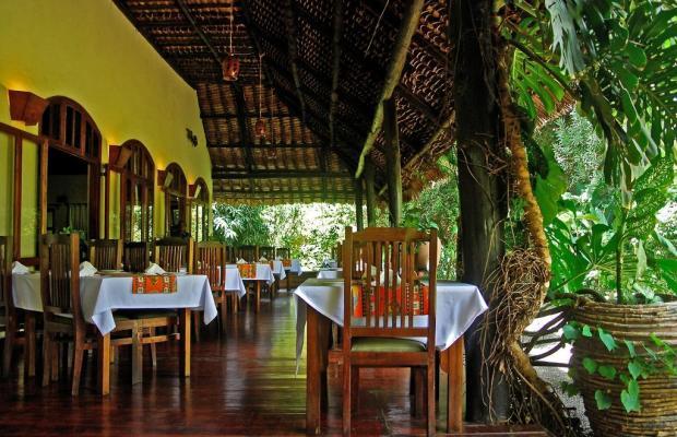 фотографии отеля Moivaro Coffee Lodge изображение №23