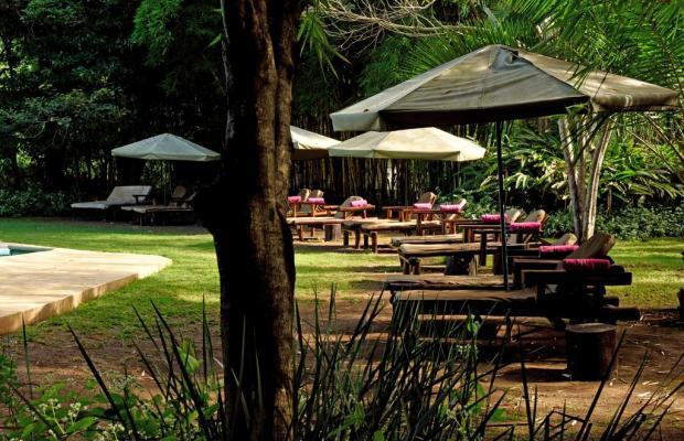 фотографии Moivaro Coffee Lodge изображение №12