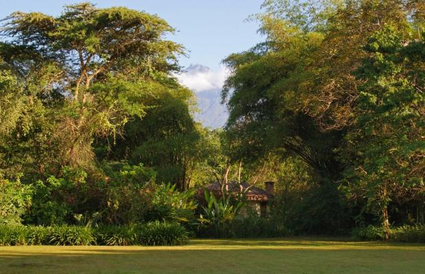 фотографии отеля Moivaro Coffee Lodge изображение №11