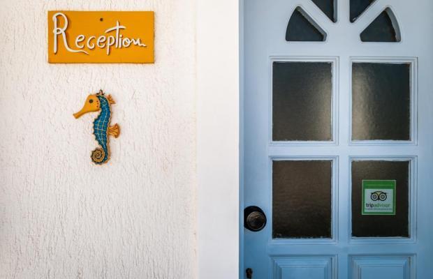 фото отеля Ippocampos Studios изображение №21