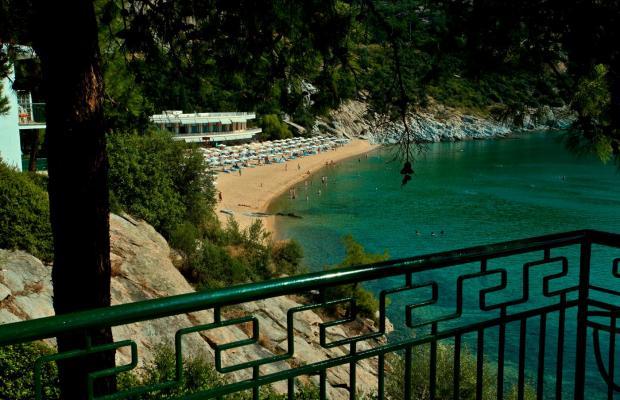 фотографии Tosca Beach Bungalows изображение №8