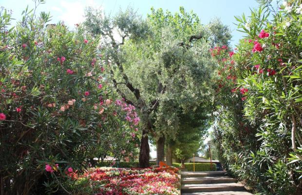 фото отеля Camping Cisano San Vito изображение №29