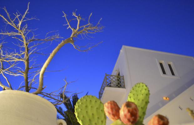 фото отеля Artemis Hotel изображение №33
