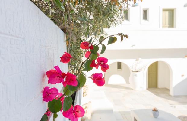 фото отеля Artemis Hotel изображение №25