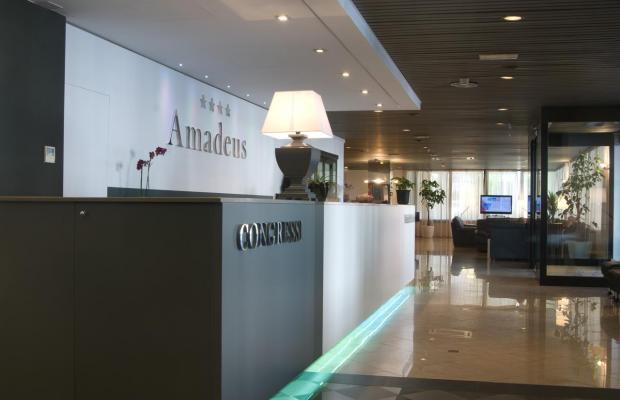 фотографии Amadeus изображение №16