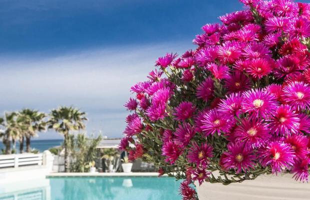фотографии Canne Bianche Lifestyle & Hotel изображение №52