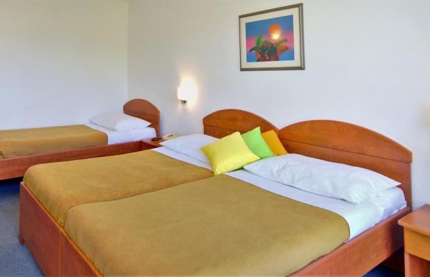 фотографии отеля Hotel Adriatic изображение №11