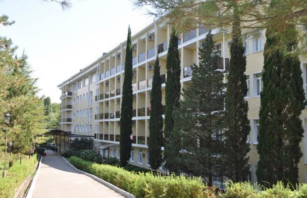 фото отеля Сосновый (Sosnovyiy) изображение №1