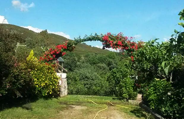 фотографии Casa Rural El Higueral De La Sayuela (ех. La Sayuela B&B) изображение №52