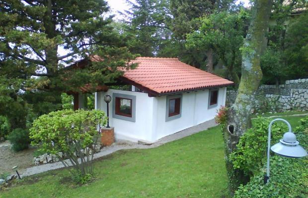 фотографии Villa Dora изображение №8