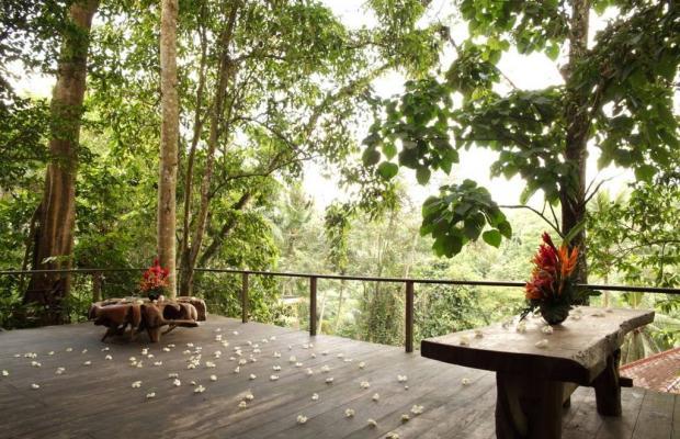 фотографии Anahata Villa & Spa Resort изображение №8