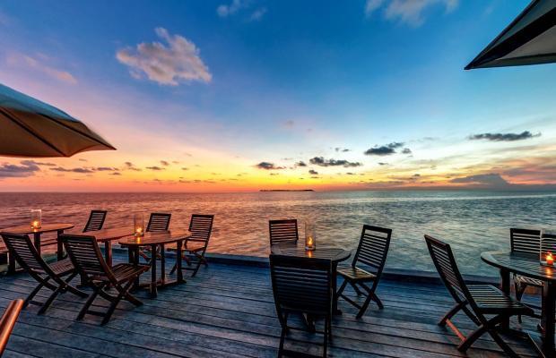 фото отеля Wakatobi Dive Resort изображение №9