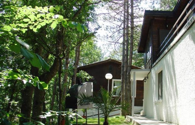 фотографии отеля Villas Tajna 2 (Вилла Тайна 2) изображение №15
