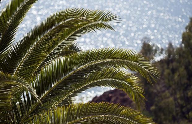 фото отеля Tiara Yaktsa Cannes изображение №5
