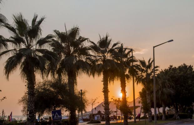 фото отеля Feria Kleopatra Ada Beach Hotel изображение №29