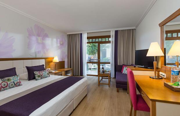 фото отеля Club Felicia Village изображение №9