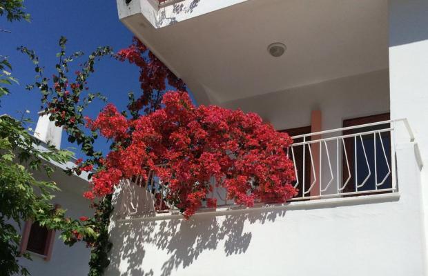фотографии Flower Villa Apart изображение №4