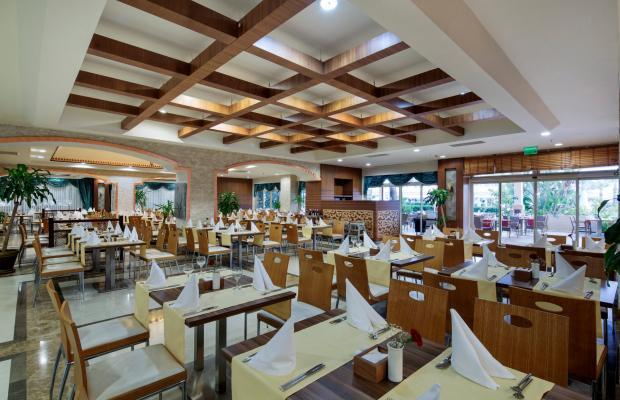 фотографии отеля Crystal Family Resort & SPA изображение №23