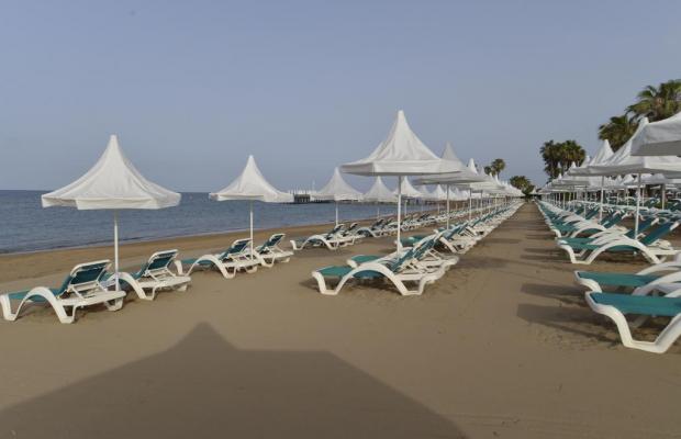 фотографии Turquoise Resort Hotel & SPA изображение №12