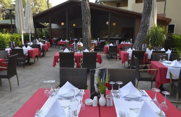 фотографии отеля Turquoise Resort Hotel & SPA изображение №11