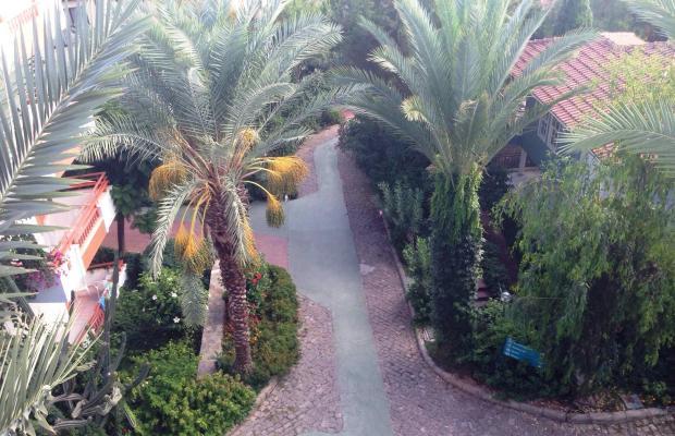 фотографии Club Gunes Garden изображение №20