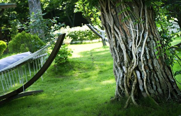 фотографии Sentido Flora Garden изображение №8