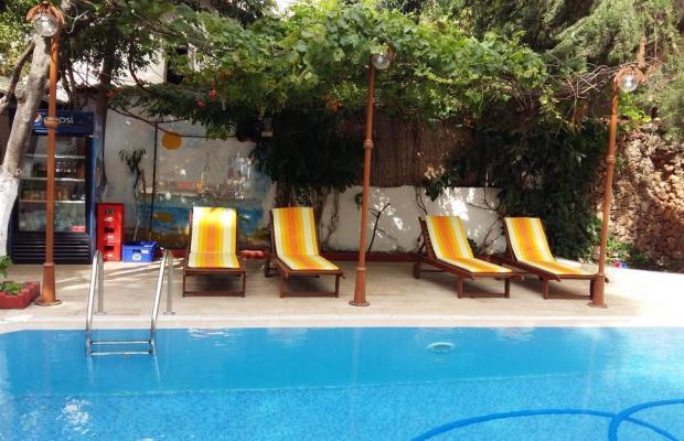 фотографии отеля Kaliptus Hotel  изображение №15