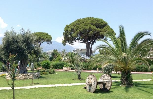фото Zena Resort (ex. Riva Zena) изображение №94