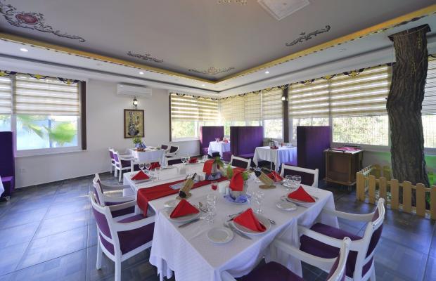 фото отеля Linda Resort Hotel изображение №89