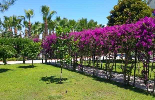 фотографии отеля Miramare Beach изображение №19