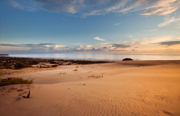 фото Golden Lighthouse изображение №6