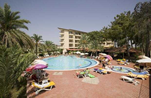 фото отеля Palm D'or изображение №1