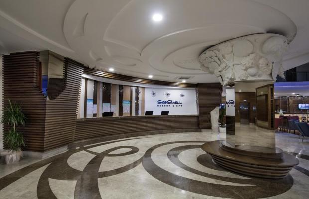 фотографии отеля Seashell Resort & Spa изображение №3