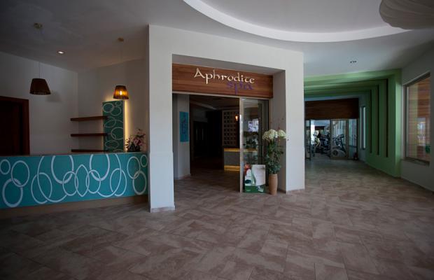 фотографии отеля Seher Sun Palace Resort And Spa изображение №27