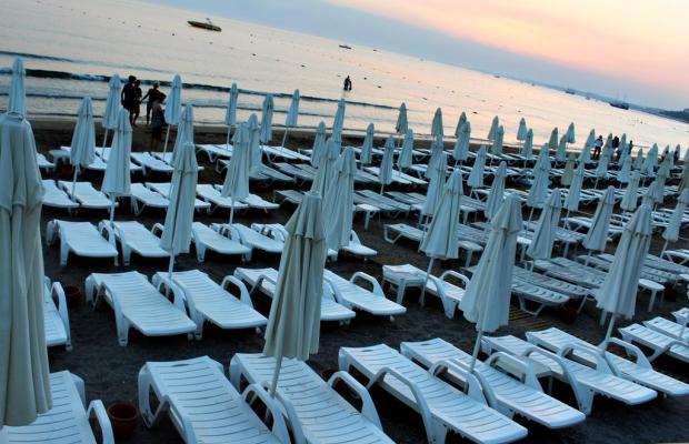 фотографии Sun Beach Park изображение №16