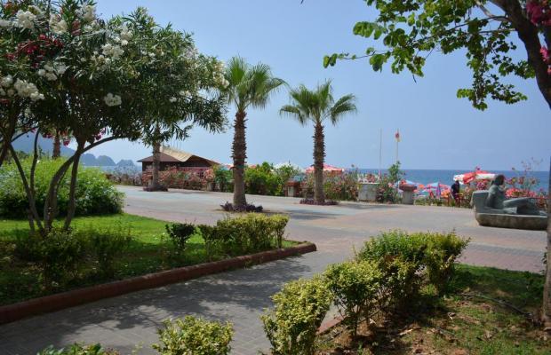фотографии Kleopatra Dreams Beach изображение №8
