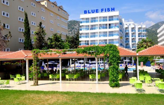 фото отеля Blue Fish изображение №13