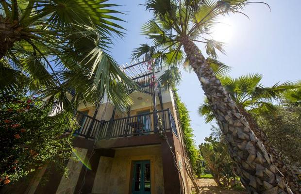 фотографии Jasmin Beach Hotel изображение №124