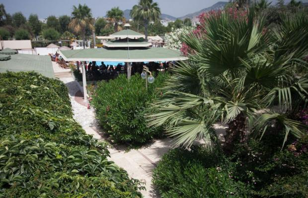 фото отеля Club Mira Luna (Club Admira) изображение №17