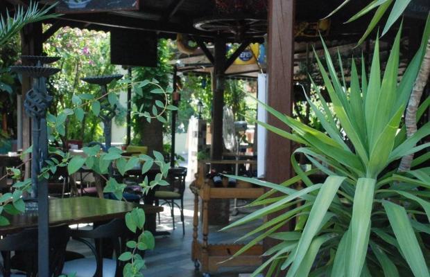 фотографии Bade Hotel изображение №16